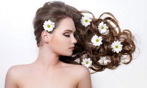 美女人物与鲜花高清摄影图片