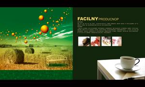 广告公司理念画册内页设计源文件
