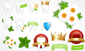 绿色健康防护牙齿健齿矢量素材