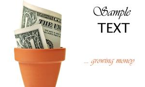 花盆中的美元钞票创意设计高清图片