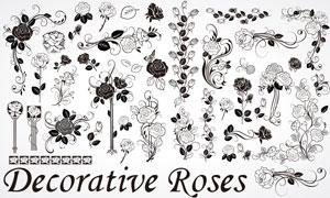 手绘黑白玫瑰花朵矢量素材