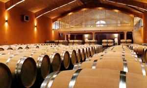 华丽的酒窖和橡木桶高清摄影图片