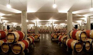 葡萄酒酒窖仓库高清摄影图片