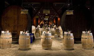 酒窖和立式橡木桶高清图片