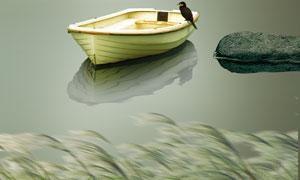 芦苇荡小鸟小船风景PSD分层素材