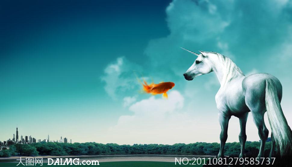 白马头像大全大图