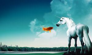 漂亮的白马与金鱼创意设计PSD分层素材