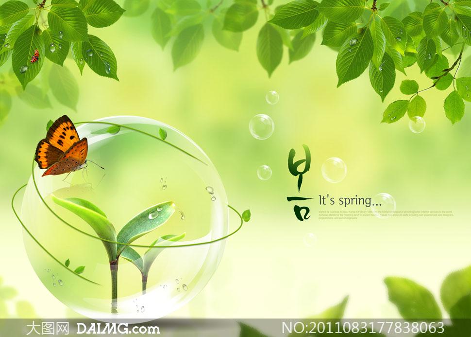 关键词: psd分层素材韩国素材春天夏天春夏风景风光自然树叶叶子绿叶