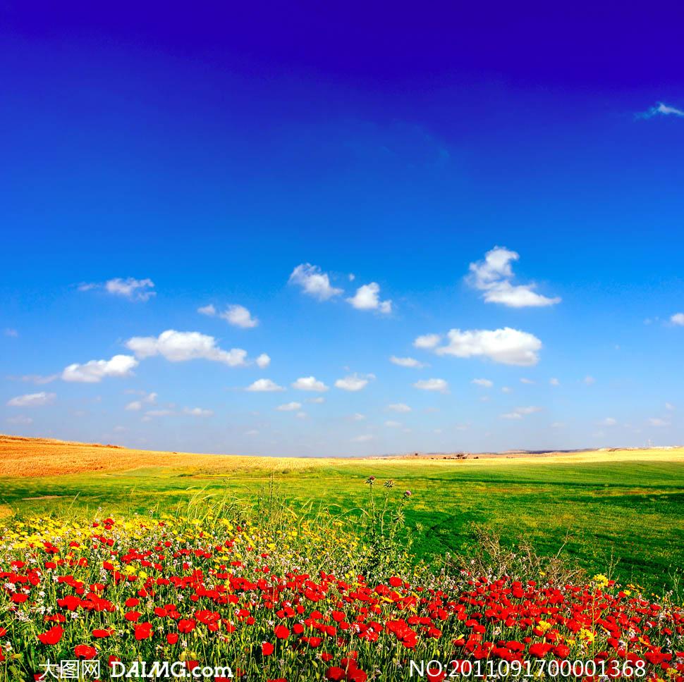 大图首页 高清图片 自然风景 > 素材信息          蓝天白云和乡间图片