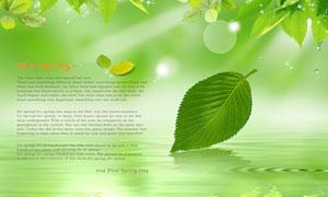 绿色清新树叶海报设计PSD源文件