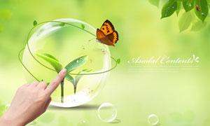 水晶球里的植物幼苗创意设计PSD分层素材