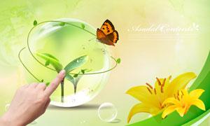 用手触碰水晶球与鲜花蝴蝶PSD分层素材