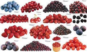 高清晰水果果实摄影图片