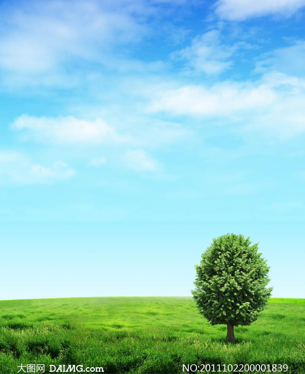 蓝天白云草地高清摄影图片