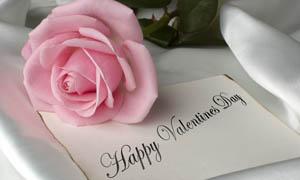 情人节送几朵玫瑰合适