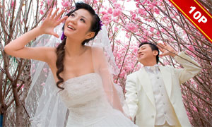 {樱花季节}跨页婚纱模板