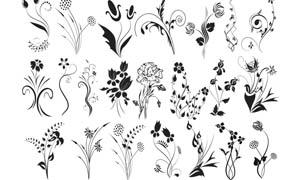 装饰花藤笔刷