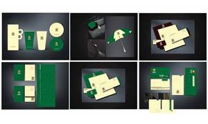 房地产VIS设计矢量素材