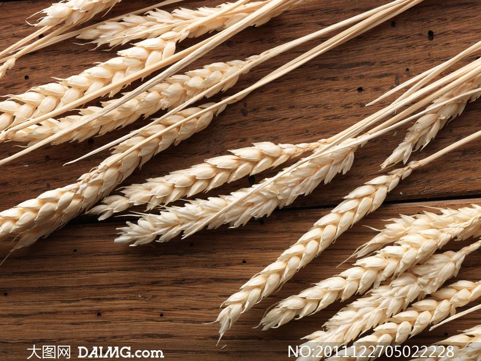 木板上的零散小麦穗高清摄影图片