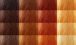 不同头发颜色展示高清摄影图片