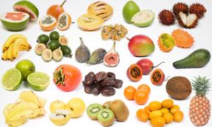 菠萝猕猴桃等水果高清摄影图片