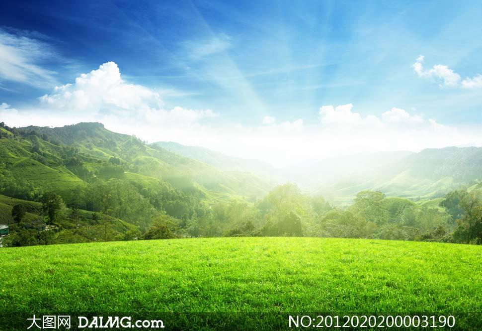 蓝天白云阳光草地草坪森林美丽大自然大自然