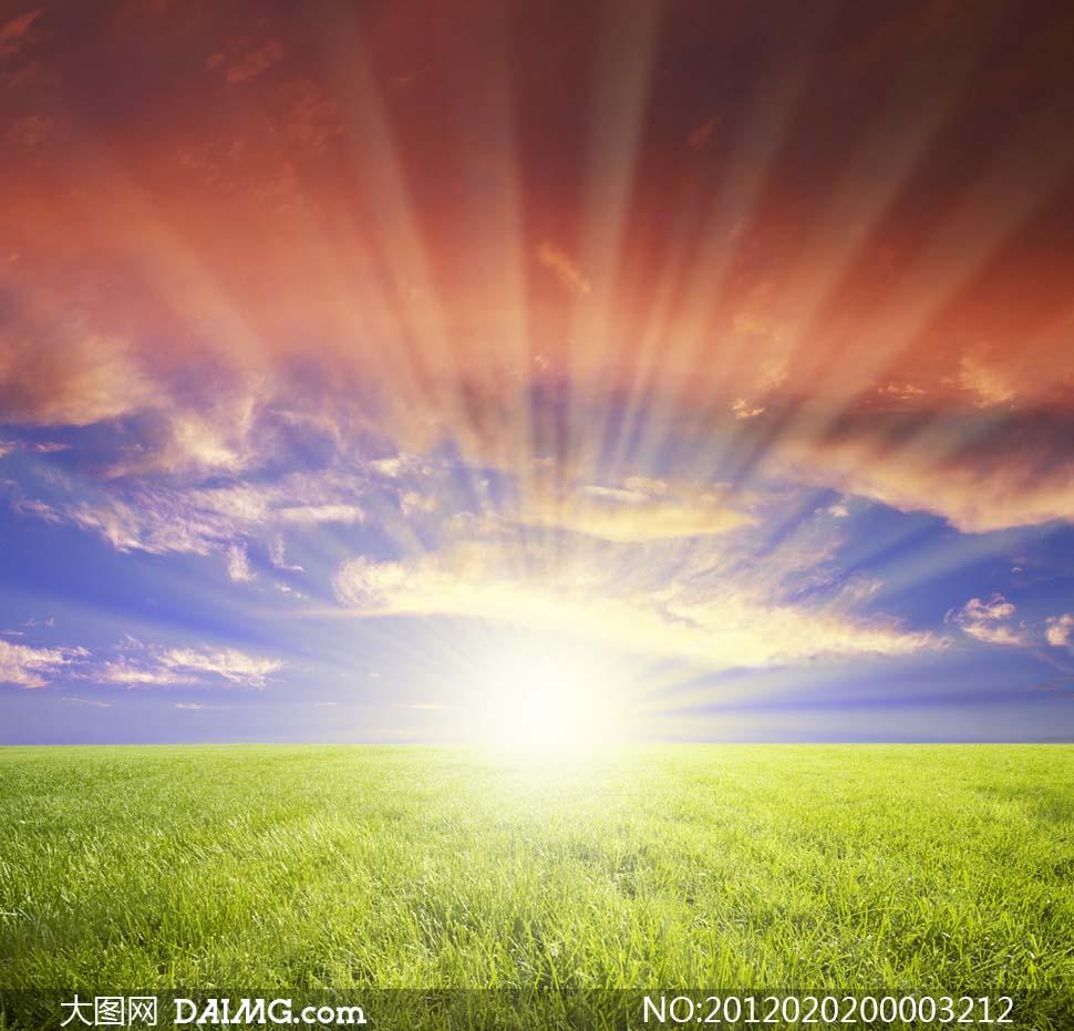 阳光下的风景书