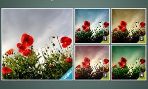 外景花朵照清新蓝色效果调色动作
