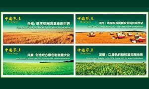 新农村建设标语展板设计PSD源文件
