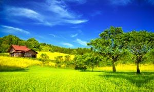 美丽乡村自然风光摄影图片