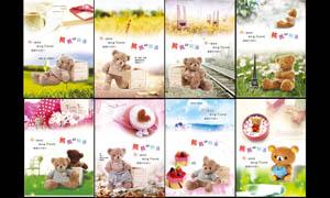 可爱小熊画册封面设计PSD分层素材