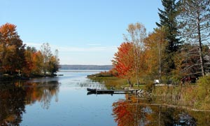 蓝天下的林中湖泊摄影图片