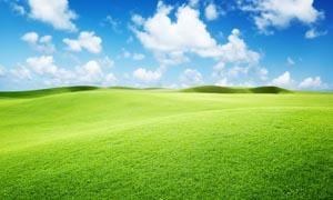 蓝天白云下的绿色草地摄影图片
