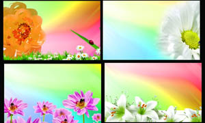 炫彩花朵卡片背景设计PSD源文件