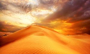 金色沙漠自然风光高清摄影图片