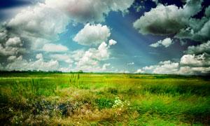 蓝天白云草原自然风景高清摄影图片