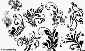 字体设计装饰花纹笔刷
