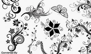 花纹藤蔓设计笔刷