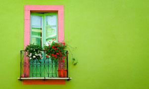 欧式窗户阳台与绿色墙壁摄影高清图片
