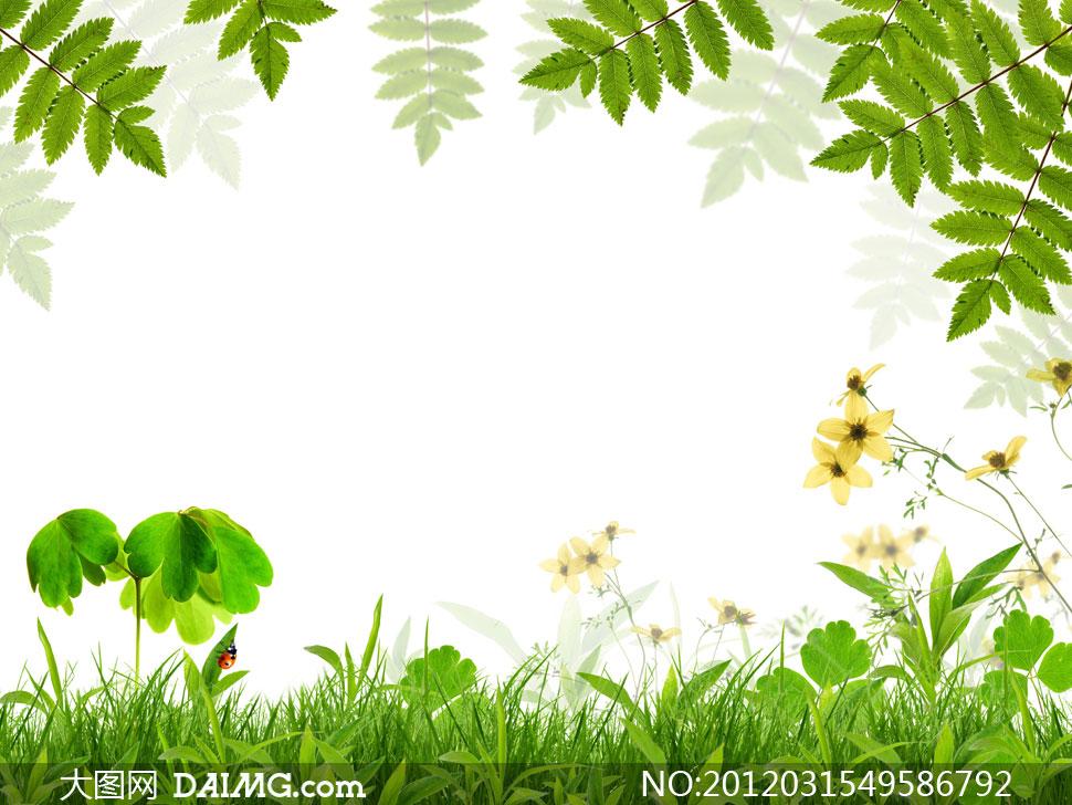 幼儿园有关春天树叶花朵的贴图