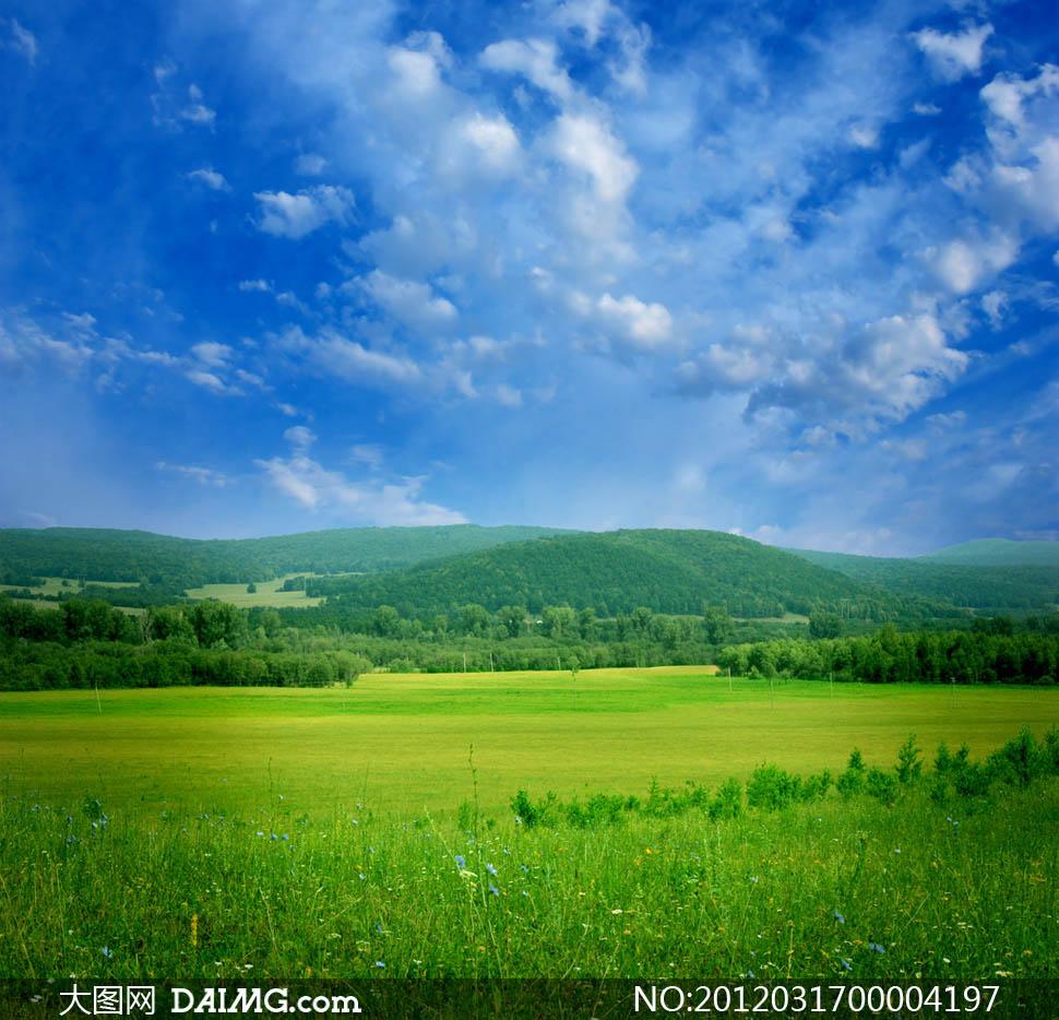 蓝天白云/蓝天白云下的草地和草原摄影图片