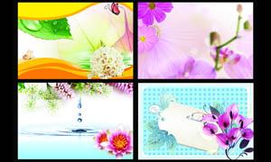 清新鲜花广告背景设计PSD分层素材