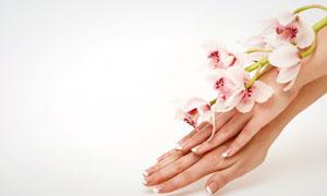 放在手臂上的鲜花摄影高清图片