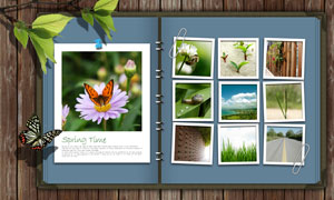 木板上的相册影集树叶PSD分层素材