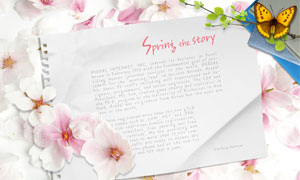 粉色花瓣与折痕白纸PSD分层素材