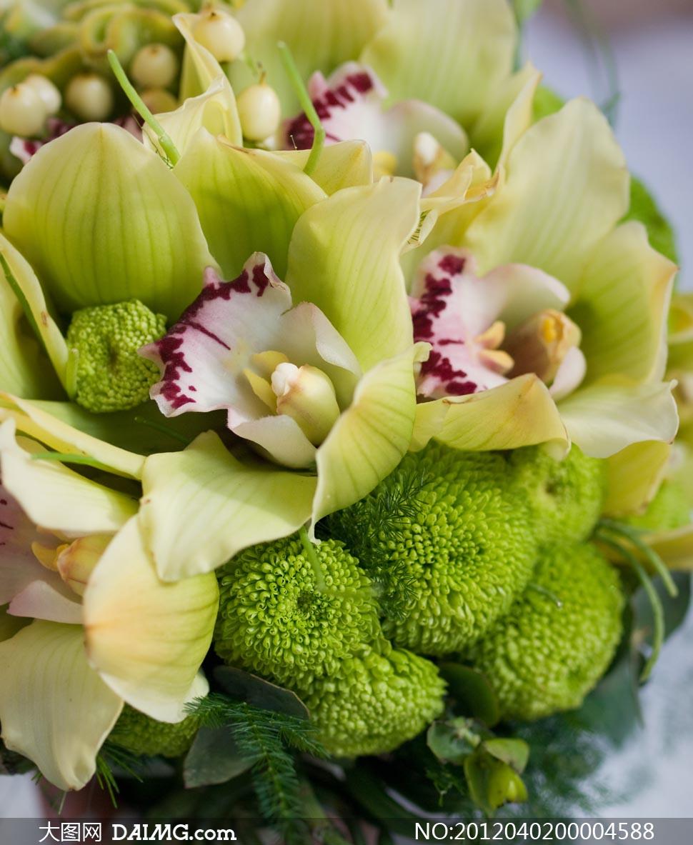 新娘鲜花花束摄影图片素材 - 大图网设计素材下载