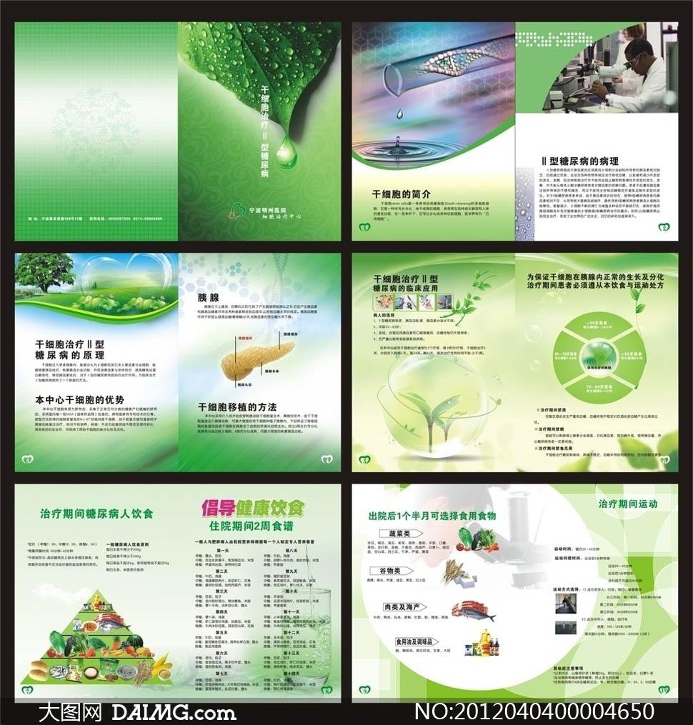 食谱食物金字塔营养金字塔淡绿背景疾病介绍肝细胞糖尿病画册设计广告