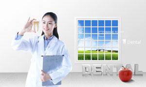 手拿牙齿模型的美女医生PSD分层素材