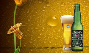 青岛啤酒广告设计模板PSD分层素材