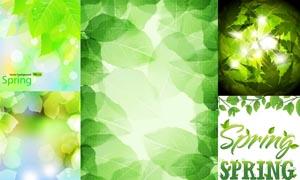 春天绿色清新背景设计矢量素材
